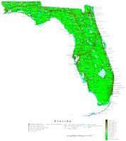 Florida Contour Map