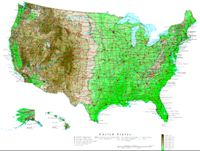 Contour elevation Map of USA States