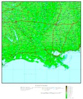 Elevation contour Map of LA State