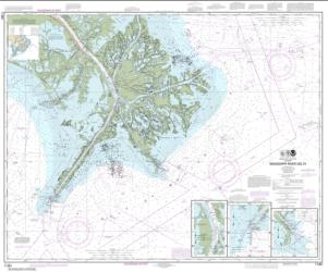 Buy map Mississippi River Delta; Southwest Pass; South Pass; Head of Passes Nautical Chart (11361) by NOAA from United States Maps Store
