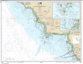 Buy map Crystal River to Horseshoe Point; Suwannee River; Cedar Keys Nautical Chart (11408) by NOAA from Florida Maps Store