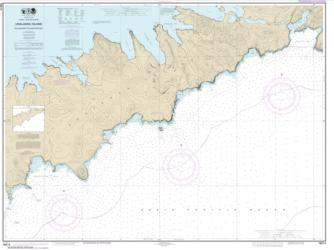 Buy map Kulikak Bay and Surveyor Bay Nautical Chart (16514) by NOAA from Alaska Maps Store