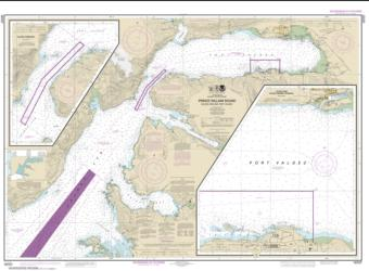 Buy map Prince William Sound-Valdez Arm and Port Valdez; Valdez Narrows; Valdez and Valdez Marine Terminal Nautical Chart (16707) by NOAA from Alaska Maps Store