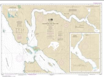 Buy map Holkham Bay And Tracy Arm - Stephens Passage Nautical Chart (17311) by NOAA from Alaska Maps Store