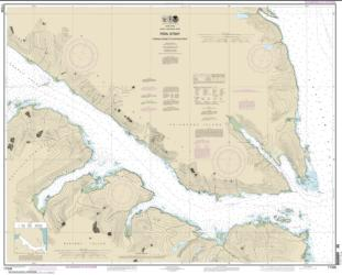 Buy map Peril Str.-Hoonah Snd. to Chatham Str. Nautical Chart (17338) by NOAA from Alaska Maps Store