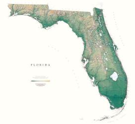 Buy map Florida, Physical, laminated by Raven Press from Florida Maps Store
