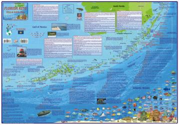 Buy map Florida Map, Florida Keys Guide and Dive,laminated, 2010 by Frankos Maps Ltd. from Florida Maps Store