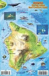Buy map Hawaii, The Big Island, Reef Creatures Guide by Frankos Maps Ltd.