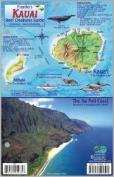 Buy map Kauai Reef Creatures Guide by Frankos Maps Ltd. from United States Maps Store