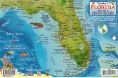 Buy map Florida Keys Fish ID Card by Frankos Maps Ltd.