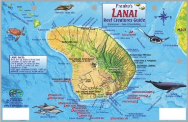 Buy map Guide to Lanai, Reef Creatures by Frankos Maps Ltd. from United States Maps Store