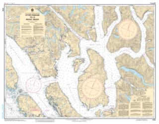 Buy map Otter Passage to/a McKay Reach by Canadian Hydrographic Service from Canada Maps Store