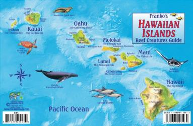 Buy map Hawaiian Islands, Reef Creatures Fish ID Card, 2012 by Frankos Maps Ltd. from Hawaii Maps Store