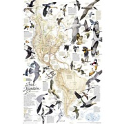Bird Migration, Western Hemisphere from Canada Maps Store