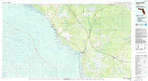 Cross City topographical map