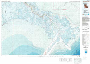 Mississippi River Delta topographical map