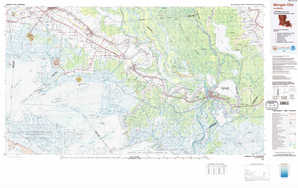 Morgan City topographical map