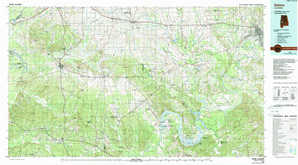 Selma topographical map
