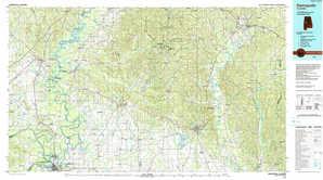 Demopolis topographical map