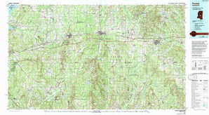 Forest topographical map