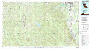 Monroe South topographical map