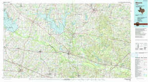 Mineola topographical map
