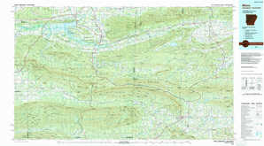 Mena topographical map