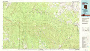 Show Low topographical map