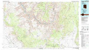 Peach Springs topographical map