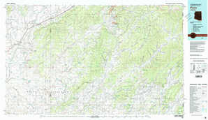 Pinon topographical map