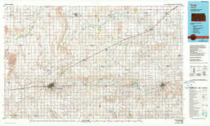 Pratt topographical map