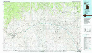 Bluff topographical map