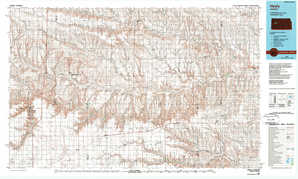 Healy topographical map