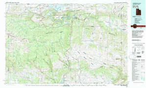 Dutch John 1:250,000 scale USGS topographic map 40109e1