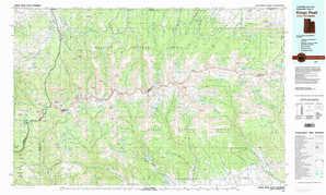 Kings Peak topographical map