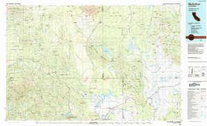 Mc Arthur topographical map