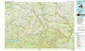 Pepacton Reservoir topographical map