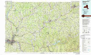 Binghamton topographical map