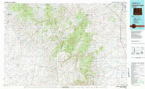 Laramie Peak topographical map
