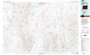 Alvord Lake topographical map