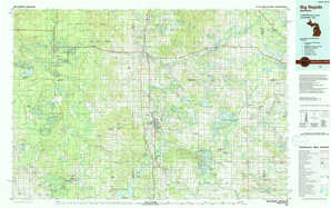 Big Rapids topographical map