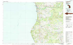 Ludington topographical map
