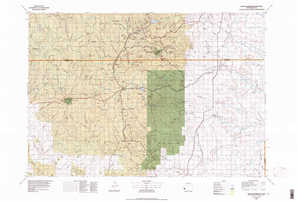 Mount Rushmore topographical map