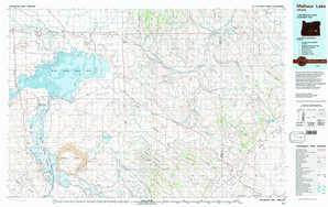 Malheur Lake topographical map