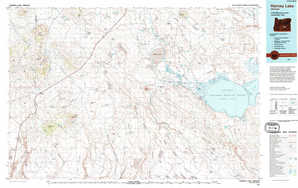 Harney Lake topographical map