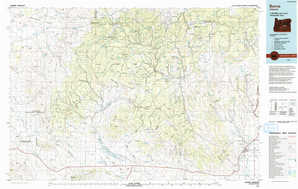 Burns topographical map