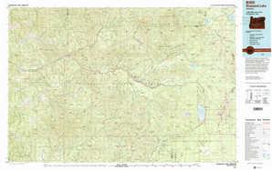 Diamond Lake topographical map