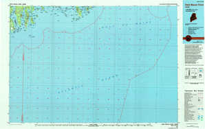 Petit Manan Point topographical map
