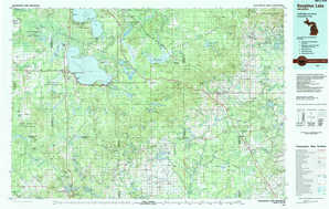 Houghton Lake topographical map