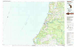 Manistee topographical map